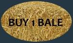buy1bale